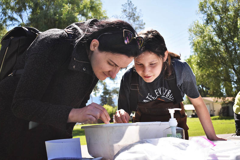 Counselor Tara Penny helps Sarah Still Smoking identify aquatic life at day two of Native Tech Camp in Ronan on June 12, 2018.