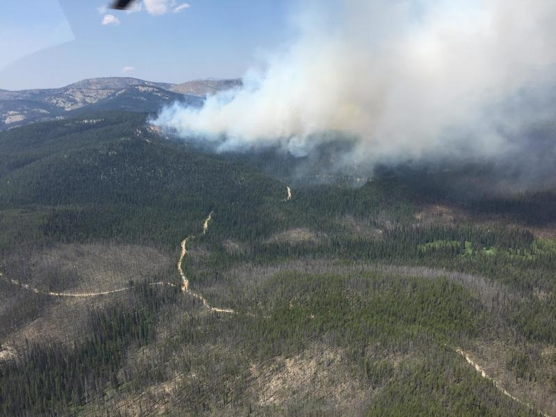 Reynolds Lake fire near the Junction of 1381 Road to Reynolds Lake Trailhead