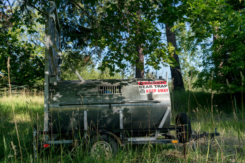 A culvert trap meant to catch grizzly bears in Mission Valley.