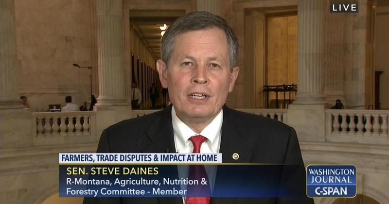 U.S. Senator Steve Daines appearing on C-SPAN on Wednesday, July 25, 2018.
