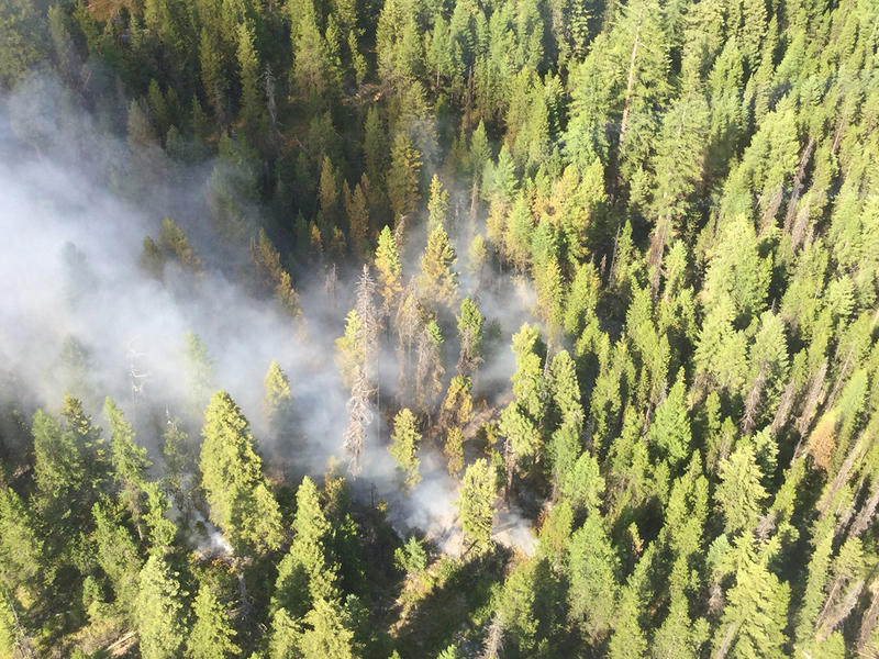 The Lee Creek fire burning near Lolo Hot Springs was spotted July 29, 2018 from a Forest Service detection flight.