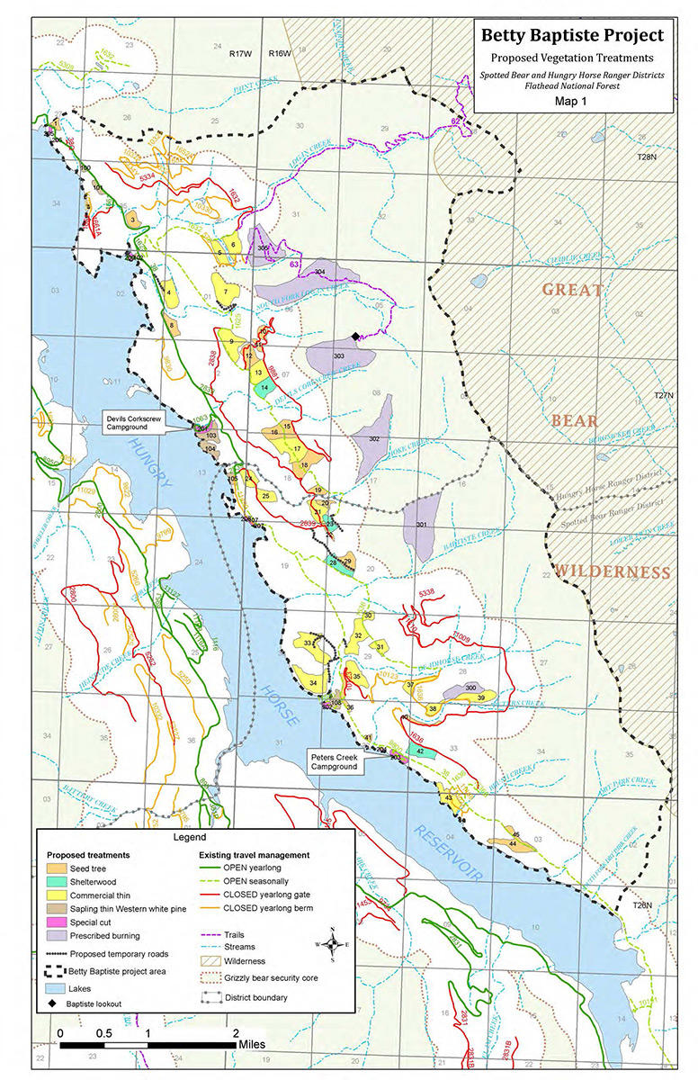 A map of vegetation treatments planned for the Betty Baptiste Project on the east side of Hungry Horse Reservoir in Montana.