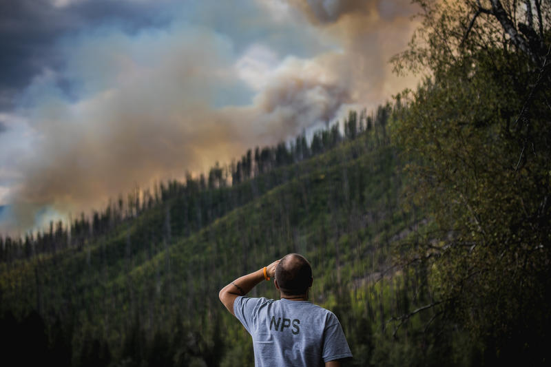 A Glacier Park employee surveying the Howe Ridge Fire the afternoon after it started on the night of August 11.