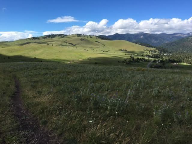 Open Space maintained by the City of Missoula in the North Hills.