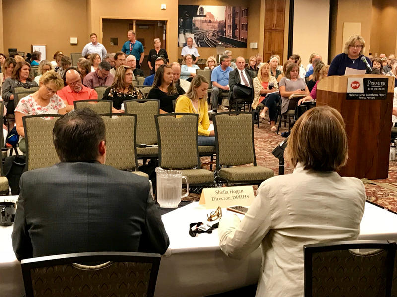 Montana Behavioral Health Alliance Executive Director Mary Windecker testifies at a state health department listening session August 1 in Helena.