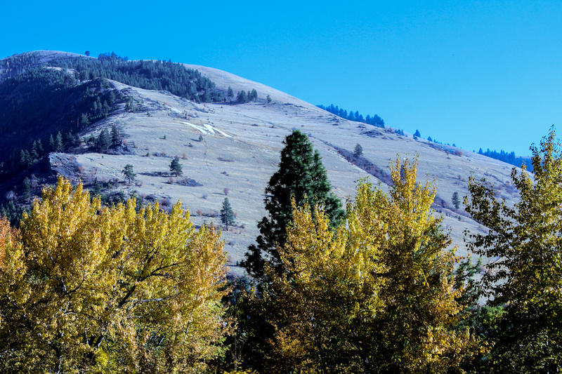 """The 100-foot tall """"M"""" on the hillside of Mount Sentinel."""