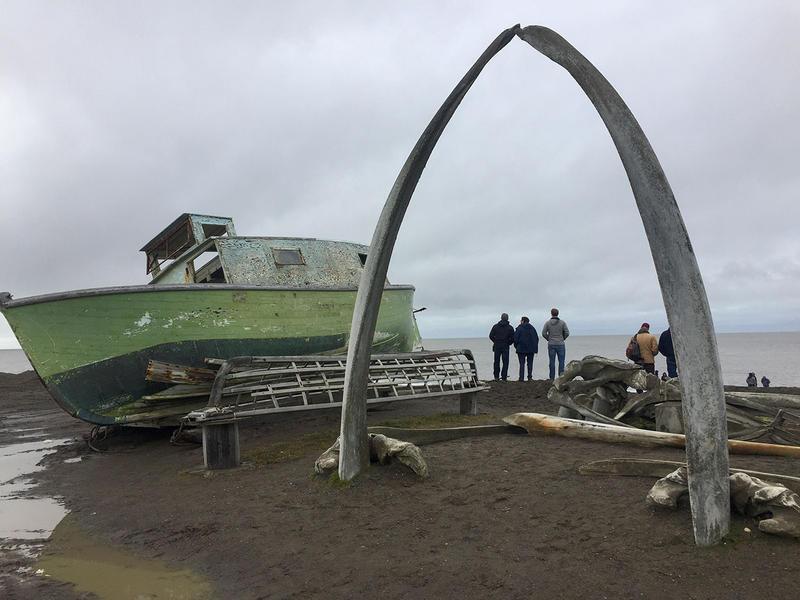 Bowhead whale bones in Utqiagvik, Alaska