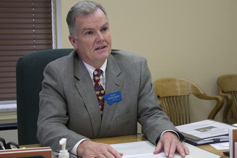 Senate President for the 2019 legislature, Scott Sales. Sales is a Republican from Bozeman. Nov. 15, 2018