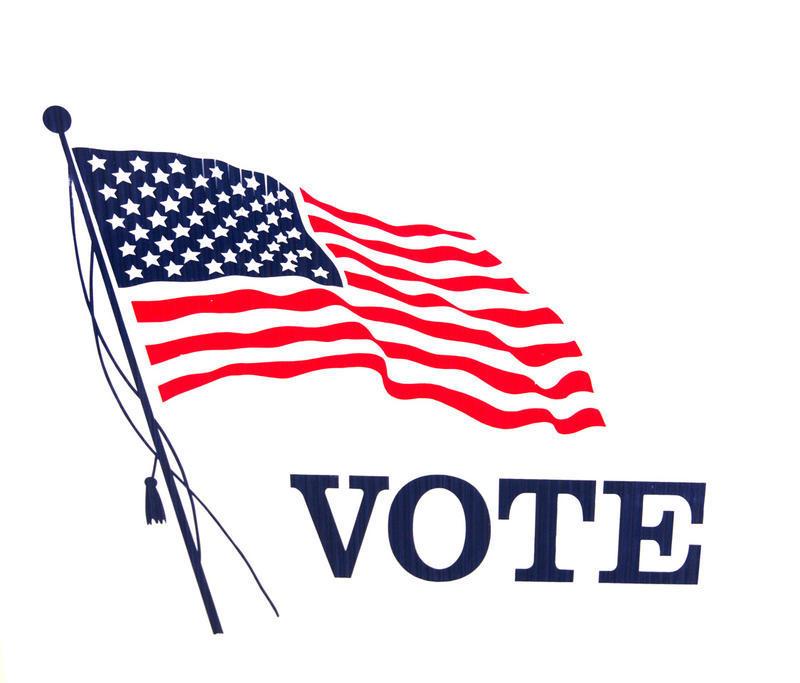 Vote flag. File photo.