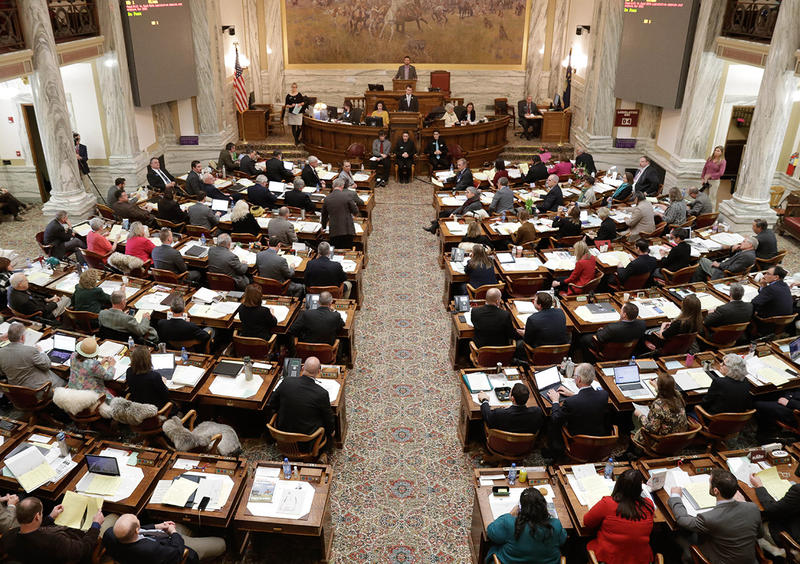 Members of the Montana House of Representatives vote on the House rules bill, which was carried by Rep. Ed Buttrey, R-Great Falls, on Jan. 10, 2019. The bill passed 88-12.