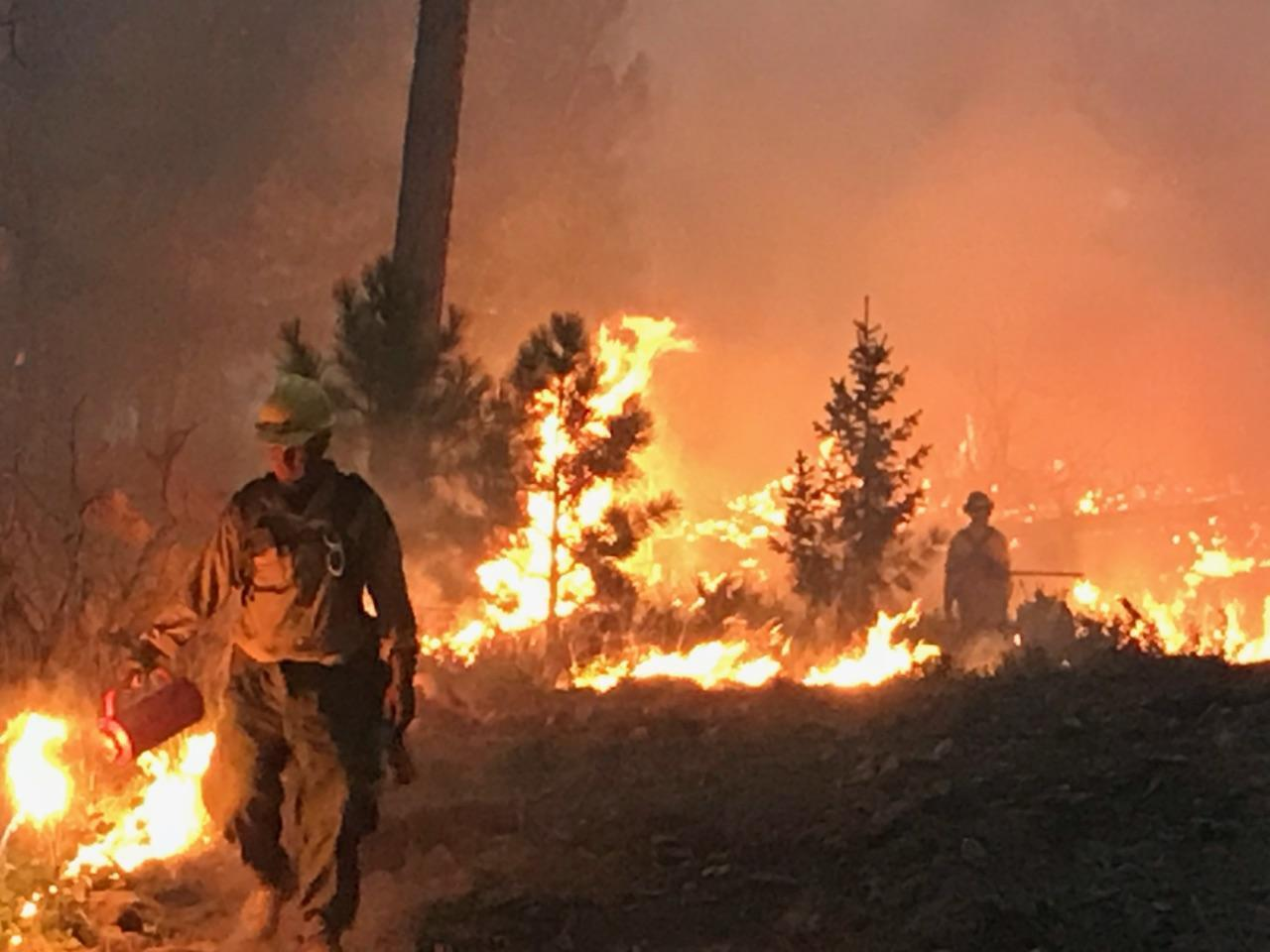 Firefighters Work The Lines On The Garden Creek Fire During The Night Of  August 8, 2018.