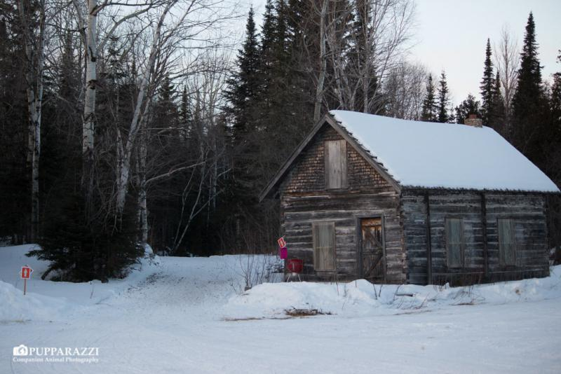The cabin at Mineral Center