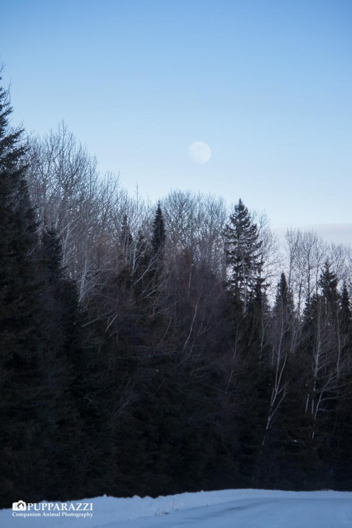 Moon over Grand Portage