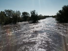 The Poudre River outside Greeley. Gary Wockner of Save The Poudre says high flows like this are essential for a healthy river.