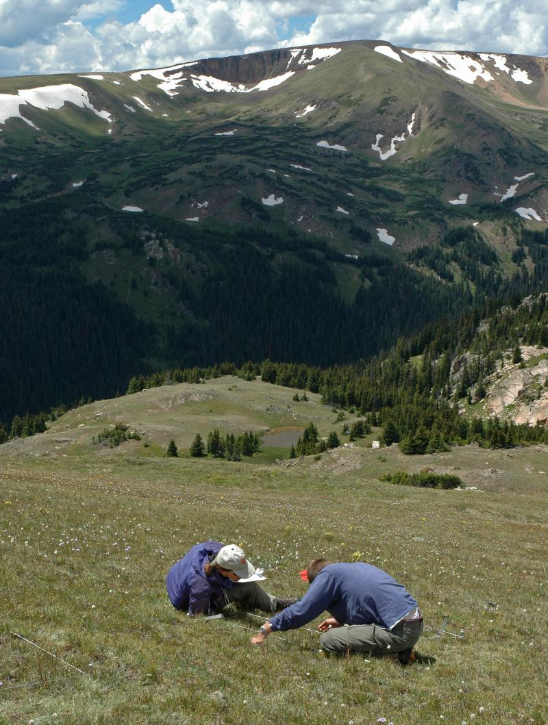 Researchers Isabel Ashton (left) and John Murgel (right) chart vegetation changes caused by atmospheric nitrogen pollution in Rocky Mountain National Park.