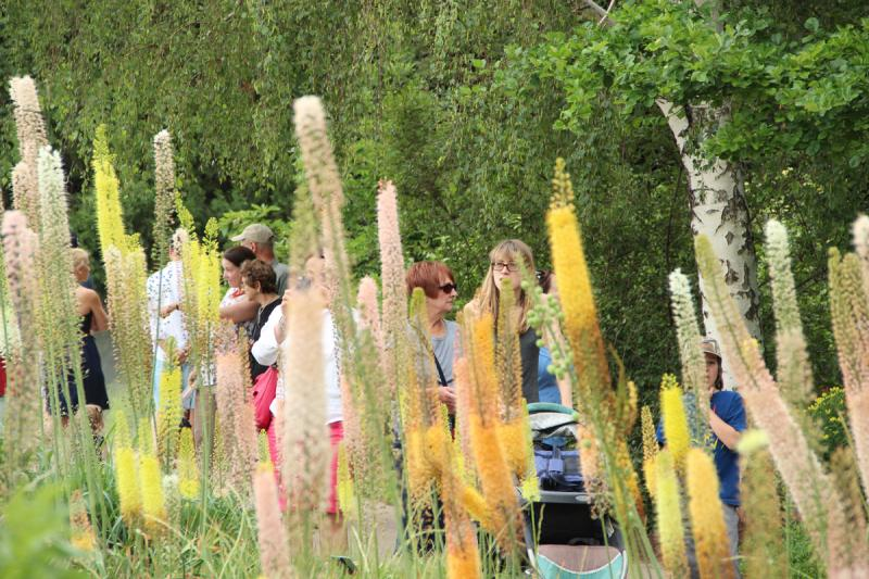 A throng of visitors attended the Denver Botanic Garden's Chihuly exhibition this weekend.
