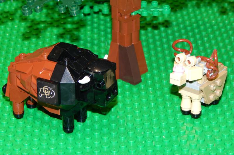 CU Buffaloes and their rivals the Rams represented in Legos.