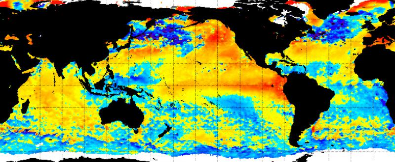 Global Sea Surface Temperature Anomaly In Celcius July 9, 2015.