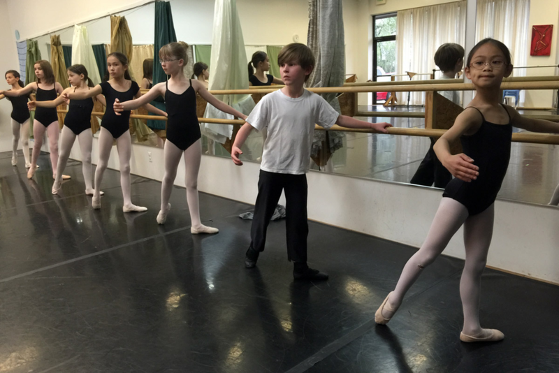 Ballot initiative 200 would have aimed to help fund nonprofit scientific and arts programs in Larimer County, such as Canyon Concert Ballet.