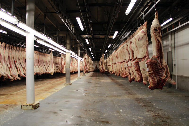 Beef carcasses cool off in a storage cooler at the JBS plant in Greeley, Colorado before moving onto the fabrication floor to be made into cuts of meat. As a policy, JBS USA doesn't allow photography on the fabrication floor.