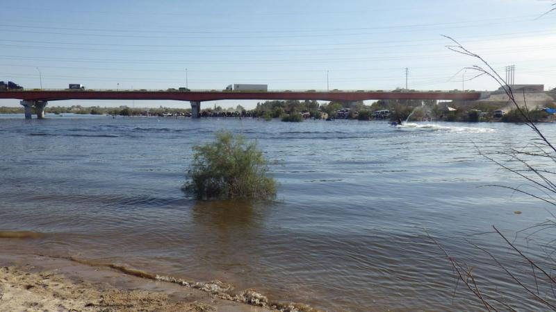 A pulse flow near the U.S.-Mexico border brought vegetation and birds back to a parched stretch of the Colorado River in March 2014.