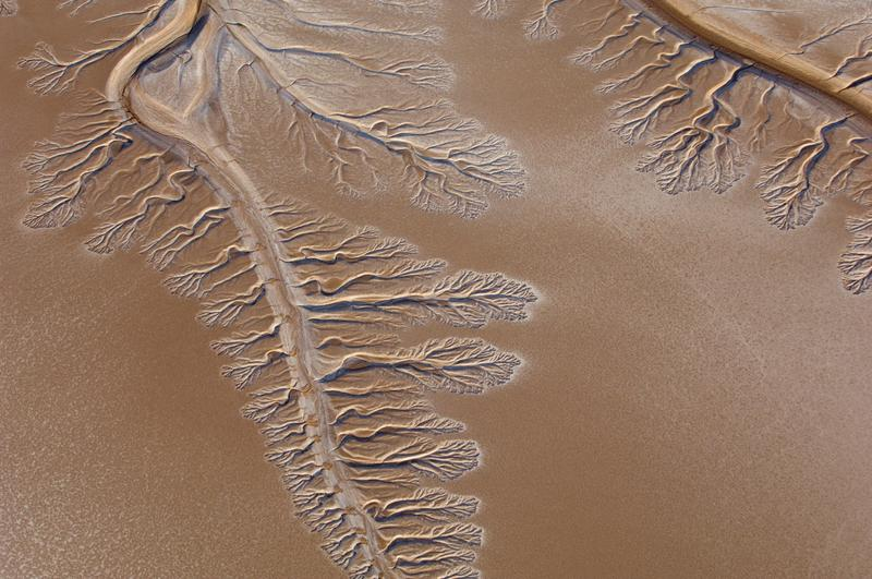 In this 2009 photo, the Colorado River ends in the Sonoran Desert about five miles before the Gulf of California.