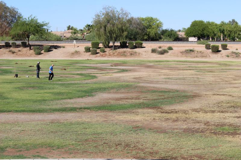 This homeowners' association in Chandler, Arizona overspent on water and still had patchy results.