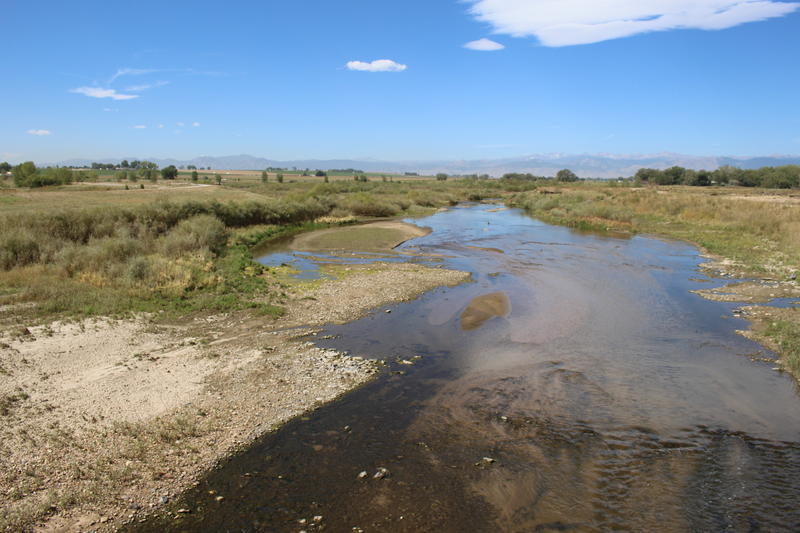 St. Vrain Creek near Longmont, Colorado flows through its new channel at Sandstone Ranch. Along its course from Rocky Mountain National Park to the plains the river left its banks. Here it carved a new channel through a series of empty gravel pits.
