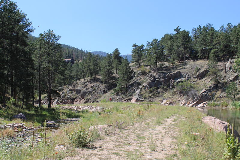 What used to be a tree-filled meadow. The small creek on the left is the Little Thompson River.