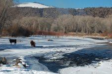 The Conejos River and Abeyta ranch