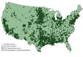 Map of United States West Nile virus activity, 2012