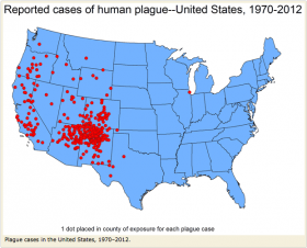 Between 1900 and 2010, 999 confirmed or probable human plague cases occurred in the United States. More than 80 percent of United States plague cases have been the bubonic form.