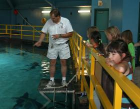 Campers in ABQ BioPark's Undersea Adventures tour the top of the Shark Tank.