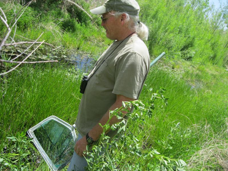 "Randy Jennings on the lookout for ""froggies."""