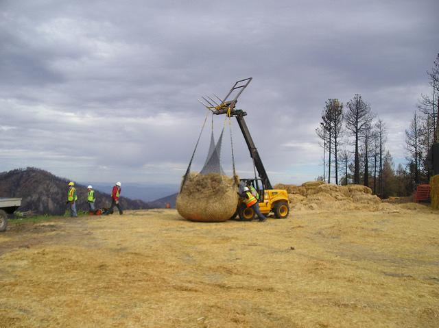 Straw is loaded into a net in preparation for heli-mulching in the wake of the Whitewater-Baldy wildfire in the Gila National Forest.