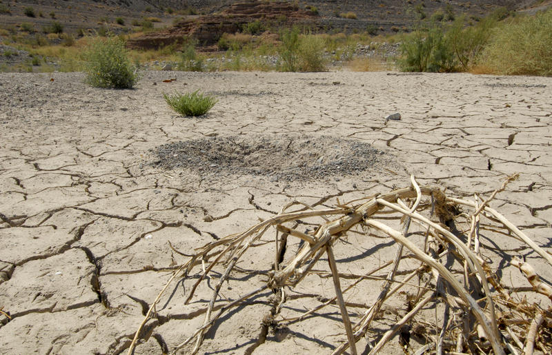 Drought is one of the major impacts of climate change in New Mexico.