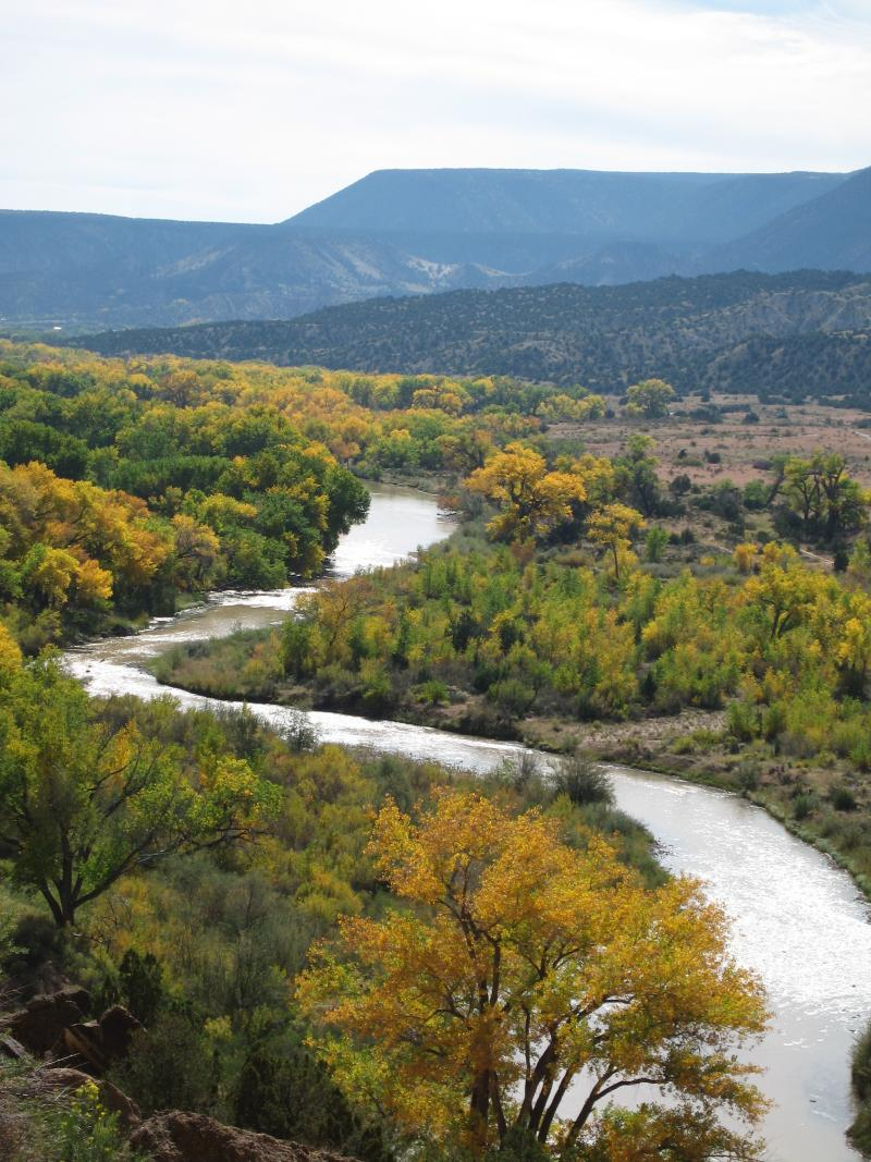 A new report by Audubon New Mexico calls for restoring natural flows on waterways like the Rio Chama