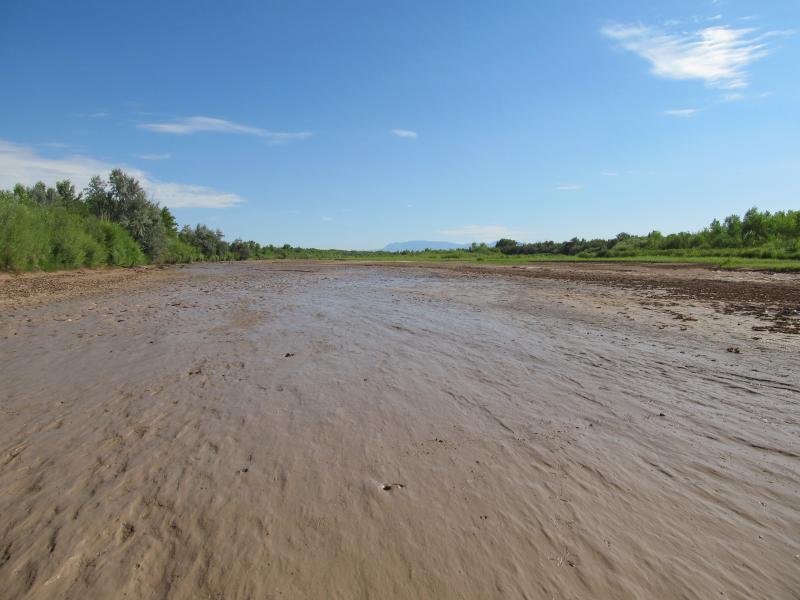 A dry stretch of the Rio Grande in Los Lunas on July 17, 2012.