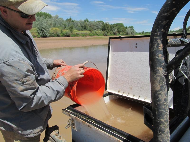 Jason Remshardt, supervisory fish biologist with the US Fish and Wildlife Service pours river water into the minnow's tank to help the fish acclimate before release.