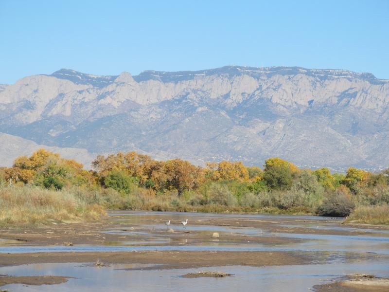 Rio Grande in Albuquerque, October 28, 2012