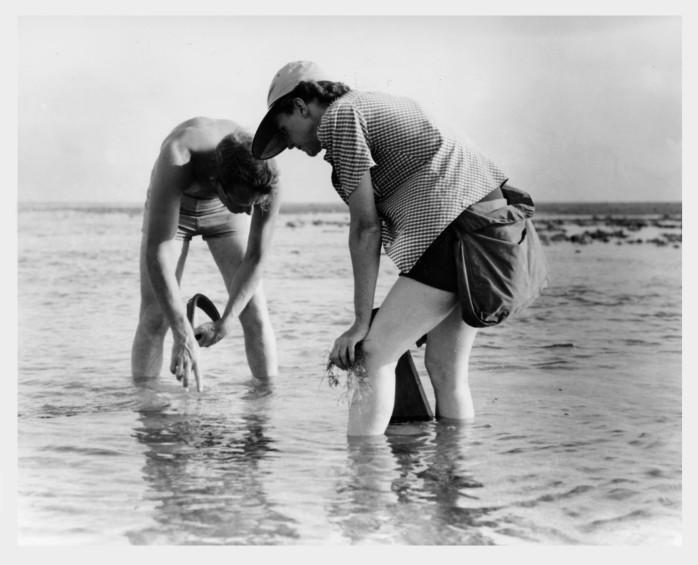 Wildlife artist Robert Hines and writer Rachel Carson.