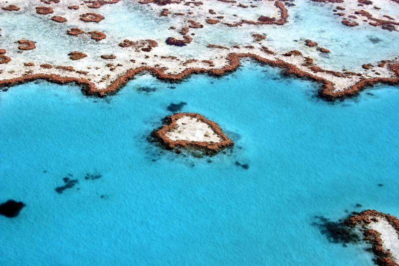 The Great Barrier Reef, a UNESCO World Heritage Site