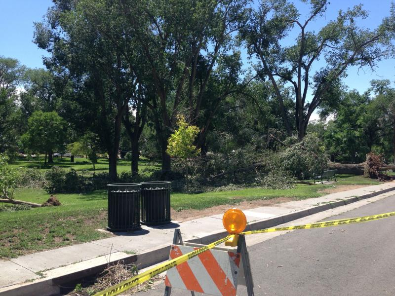 The storm wreaked havoc on the old growth trees at Hyder Park near Bandelier Elementary school.