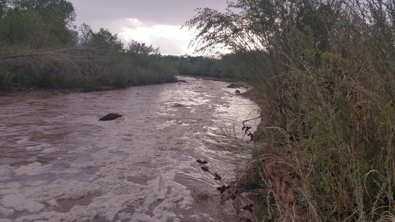 Stormwater flowing into the Rio Grande from the Tijeras Arroyo south of Albuquerque