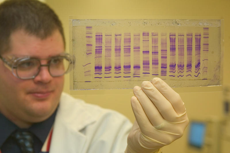 Chemist reads a DNA profile