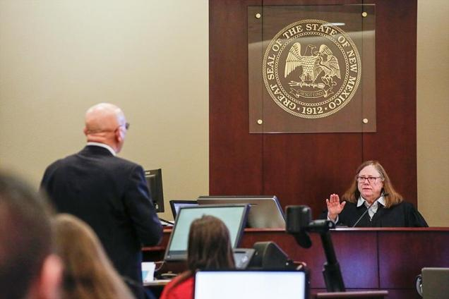 Judge Sarah Singleton presides in the SFR v. Martinez case.