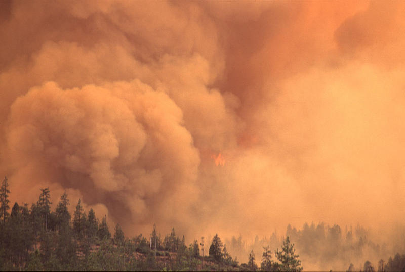 A Pacific Northwest wildfire, 2013