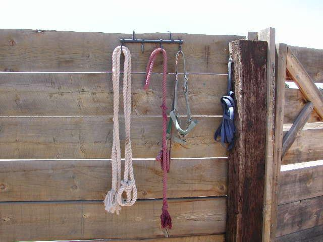 Tools of the horse rescue trade.