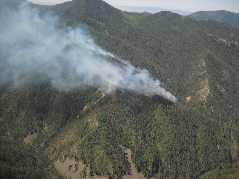 Whitewater fire in the Gila National Forest