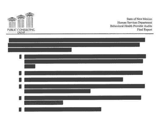 Many pages of the audit released by the state Attorney General's office were partially or fully redacted. The New Mexico Foundation for Open Government posted the full document online. http://nmfog.org/uploads/PressRelease/cf6b22f5312b412198762483474b1435/PCG_Redacted_Audit_Report.pdf